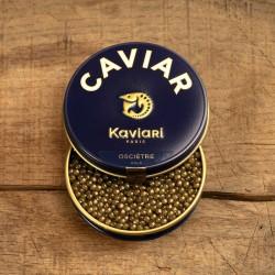 Oscietra Gold (Zuchtkaviar: Europa oder China)